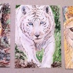 "3 Wildcats, ATC, 2.5"" x 3.5"", wc & ink"