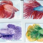 "Betta Fish, ATC, 2.5"" x 3.5"", watercolor"