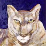 """Mountain Lion, 20"""" x 20"""", acrylic"""