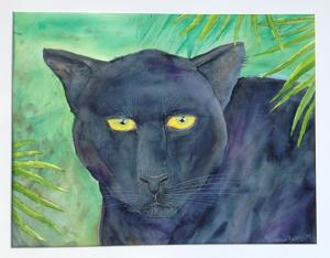 panther photo